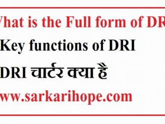 What is the full form of DRI